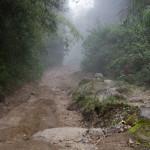 Der Weg zum Baru, beim Abstieg in den Wolken