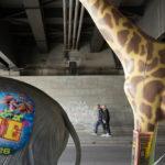 Die wilden Tiere vom Bahnhof Zoo